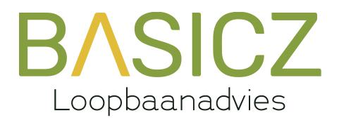 logo-basicz-loopbaanadvies-website